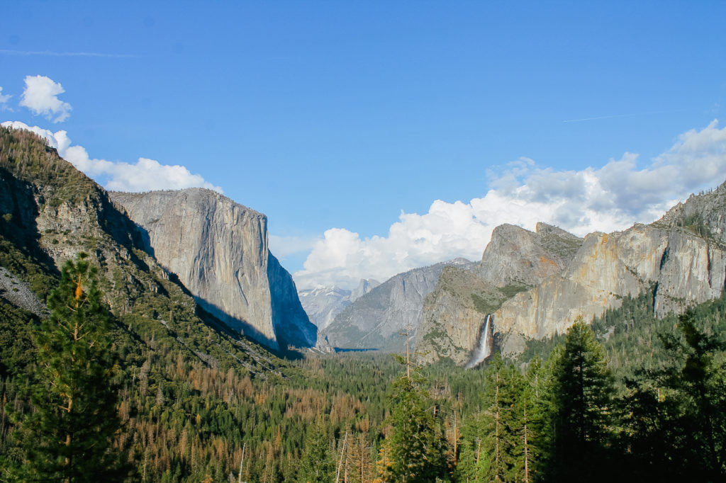 Yosemite National Park is beautiful but busy, here's what you should know before you go.